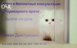 Вызов ветеринара (О9З)4О8-09-З6 на дом Харьков и пригород.