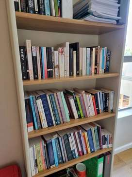 Bookcase (excluding books)