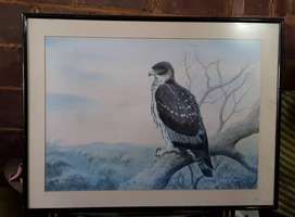 Various beautiful paintings of animals and birds