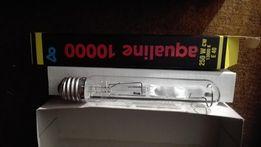 żarnik aqua medic 250 watt nowy morskie