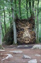 Drewno opałowe kominkowe twarde Lisciaste-wszystkie rodzaje
