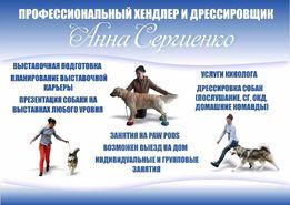 Дрессировка и выставочная подготовка собак в Житомире.