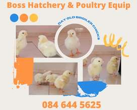 Boss Hatchery and Poultry Equip
