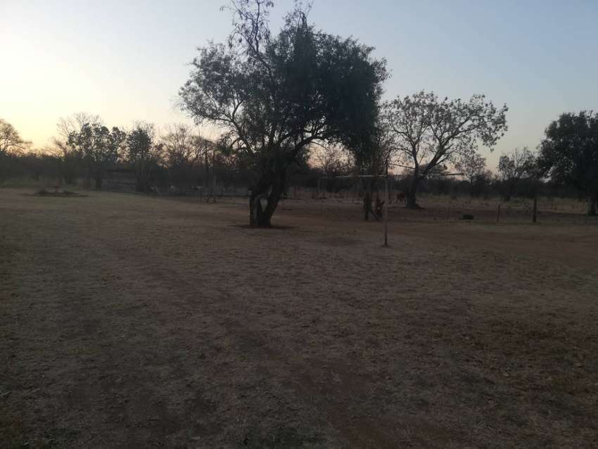 8.5 hectar plot for sale with 2 houses in bultfontein 0