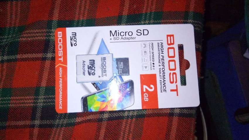 Micro SD aka 2GB Memory Card + SD Adapter 0
