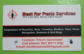 BEST FOR PESTS SERVICES