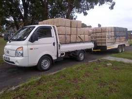 ALL REMOVALS