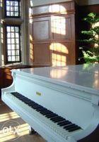 Уроки фортепианного мастерства с 0 и до консерватории.