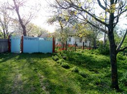 Продається будинок у селі Ропотуха Уманьського району