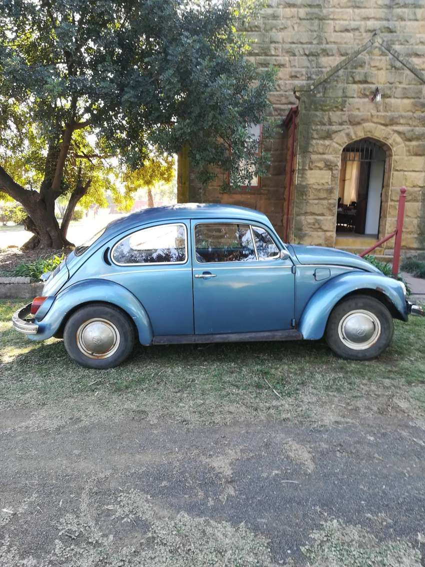 VW Beetle 1978 Model 0