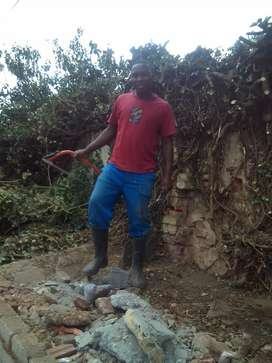 Hard working Malawian man looking for a Job as a Gardener