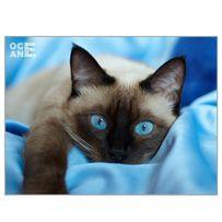 Алмазна вишивка «Сіамська кішка»