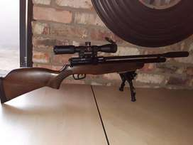 gamo coyote 4.5mm with extras