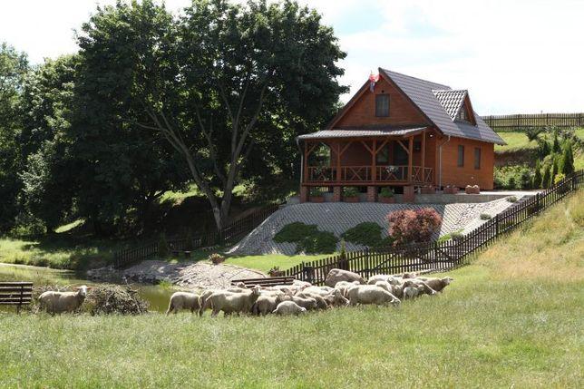 Agroturystyka Mirella Wielka Wieś - image 3