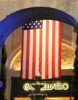 Обучение в США. Языковые курсы в Америке.Учеба в Америке