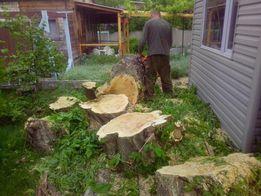 Валка деревьев, уборка территории под застройку и т.д.