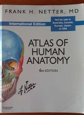 Atlas of Human Anatomy Frank H. Netter MD 6th Edition