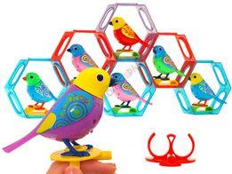 Śpiewający INTERAKTYWNY ptaszek w ramce ZA1236