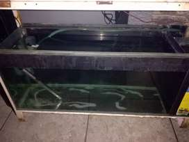 120 L Fish Tanks build in sub filtration.