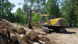 Удаление деревьев\Расчистка-очистка уборка участка\корчевание деревье