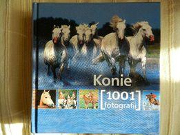 Konie. 1001 fotografi