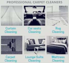 Couches, CARPETS and car seats cleaning services