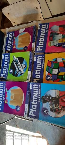 Grade 4 Platinum textbooks