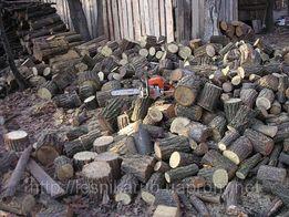 Порезка и колка дров