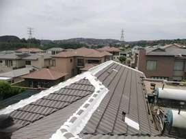 Professional Waterproofing and Roof painting