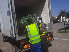 Removals and Transport  Services