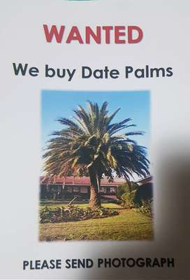 R3000 CASH FOR YOUR PALM
