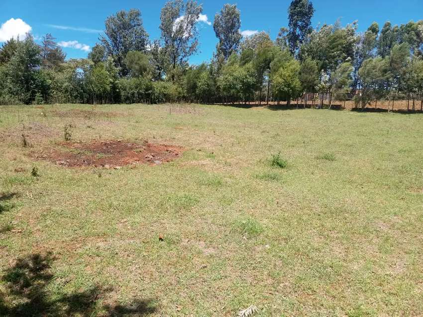 1/4 an acre plot on sale at elgon view in eldoret 0