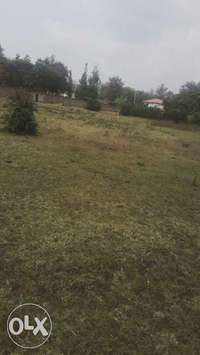 Plot for sale 0