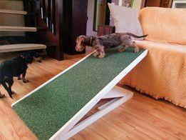 Animal Ramp- profesjonalny regulowany podest, rampa dla psów HIT