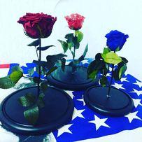 Роза в стеклянной Колбе+(коробка,гравировка,лепестки).НОВИНКА 2018