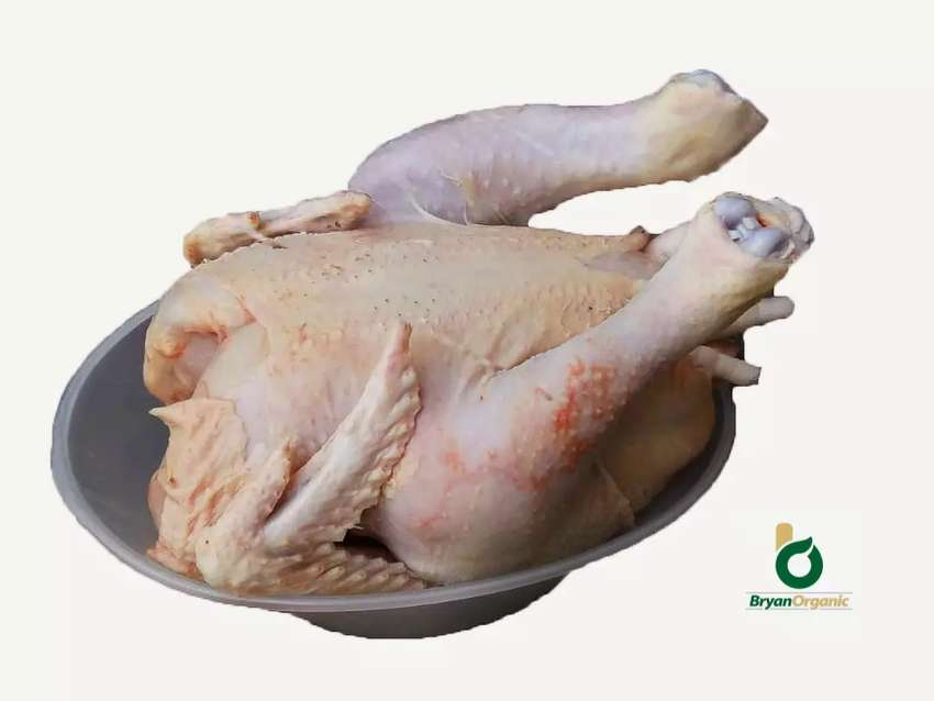 Dressed broilers for sale 0
