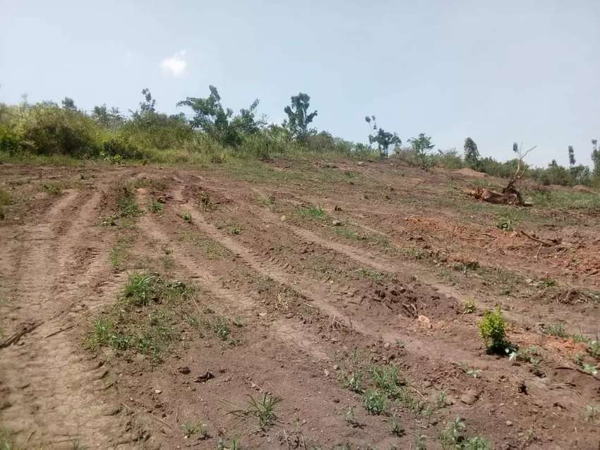 Cheap plots on sale in Gayaza kiwenda 50by 100ft at 14m ready title 0
