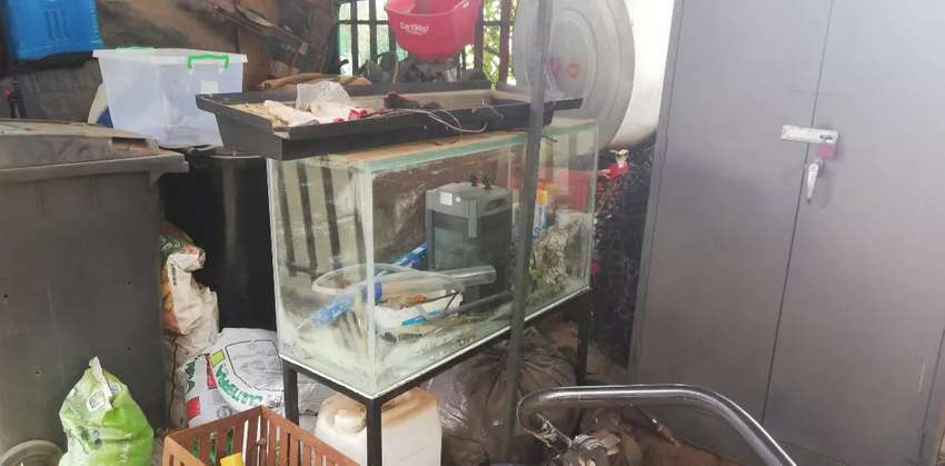 3foot fishtank with accessories 0