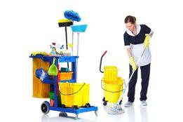 Уборка квартир, домов и бизнес помещений