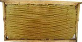 Сушь для пчел на ульевой рамке Рута (435*230 мм)