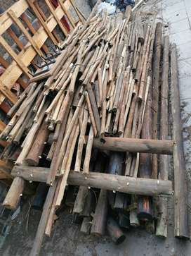 Poles wooden used