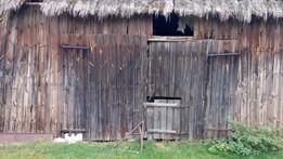 SKUP stodola szopa budynki drewniane stare deski bale