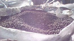 Пеллеты из лузги подсолнечника 2400грн. Брикеты 2400. Аналог - уголь
