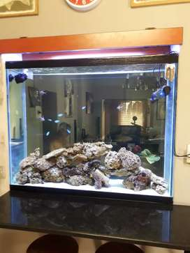Marine fish tanks at a fraction of the price.