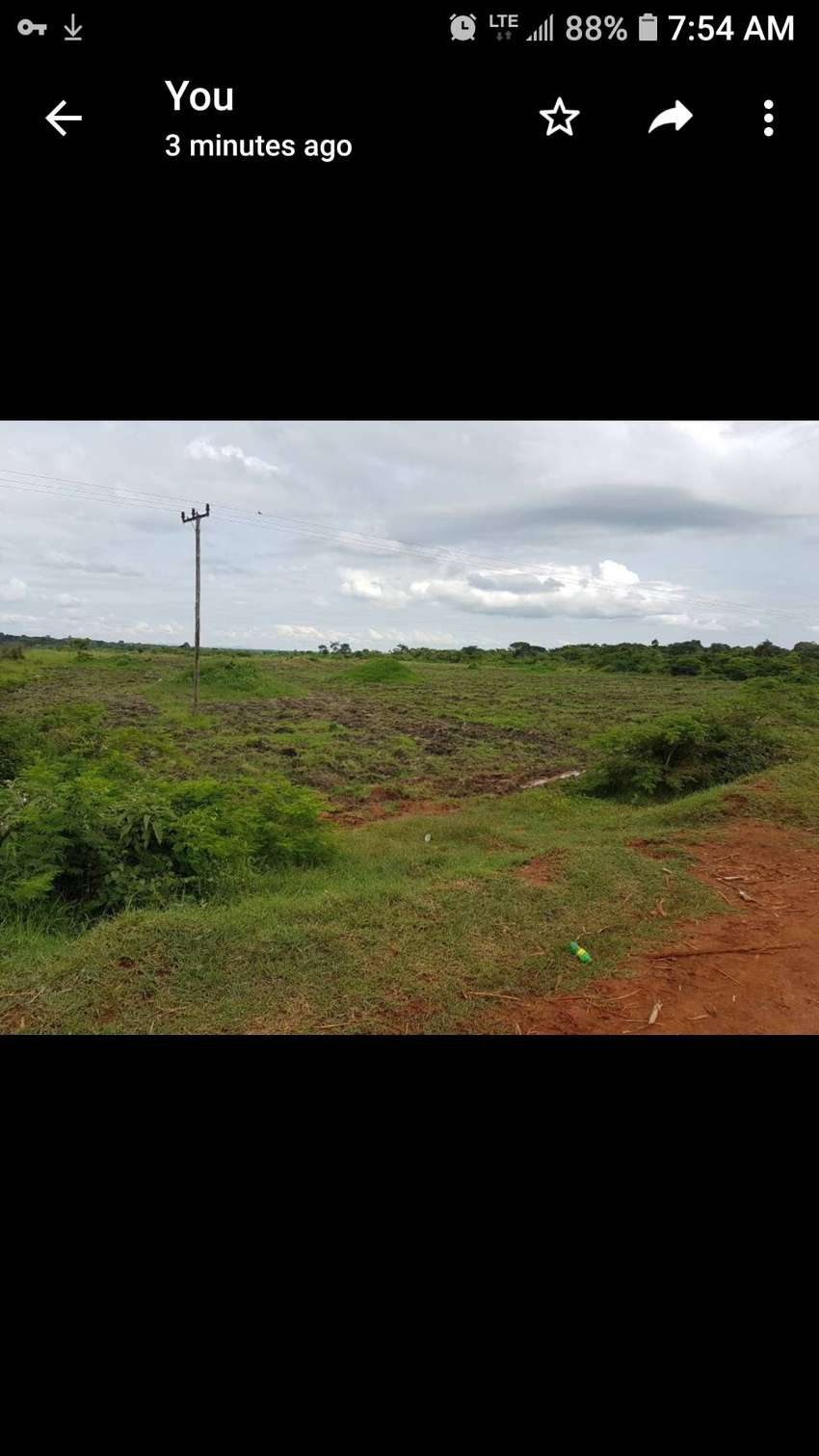 Land for sell 40 acres 0