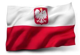 Страховка для рабочей визы в Польшу +анкета. Страховка для безвиза