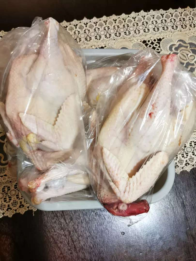 Slaughtered Backyard chickens