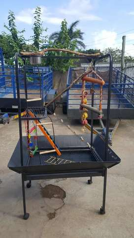 Big parrot open cage for sale
