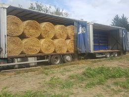 Słoma 120/120 ze stodoły dla koni z dowozem do 30 km w cenie