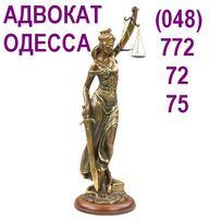 Адвокат по Гражданскому и Уголовному Праву